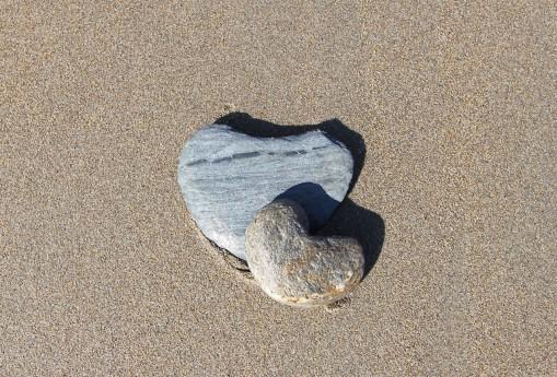 Umeni_milovat_srdce_leto