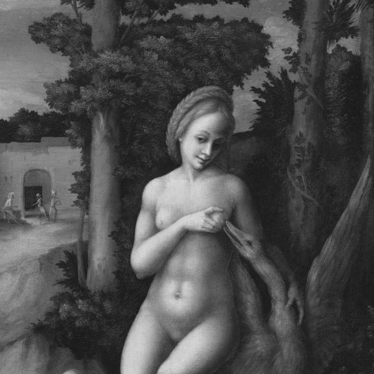 erotika v umeni, Leda s labutí, Bachiacca