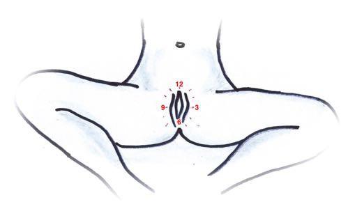Vaginalni-sebe-mapovani-orientace